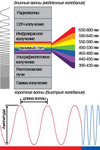 восприятие цвета человеком схема
