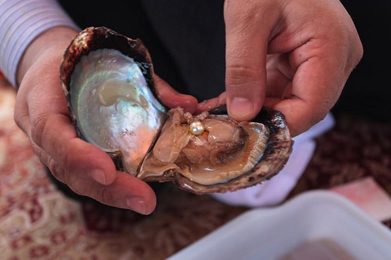 жемчужина в раковине моллюска