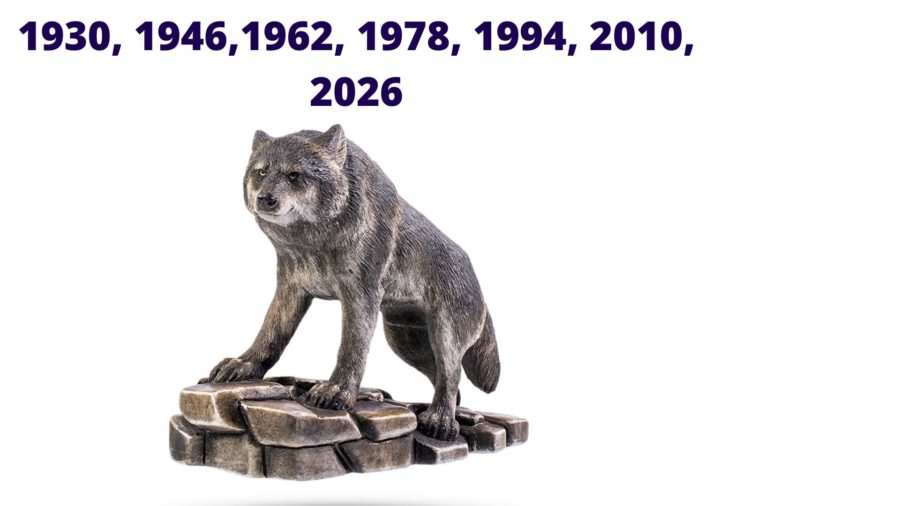 годы люта или волка